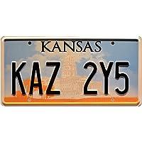 Supernatural   KAZ 2Y5   Metal Stamped License