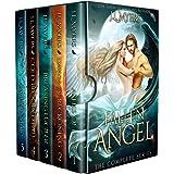 Fallen Angel: The full series box set