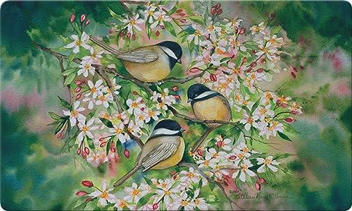 Toland Home Garden Sweet Chickadees 18 x 30 Inch Decorative Floor Mat Spring Bird Tree Flower Doormat