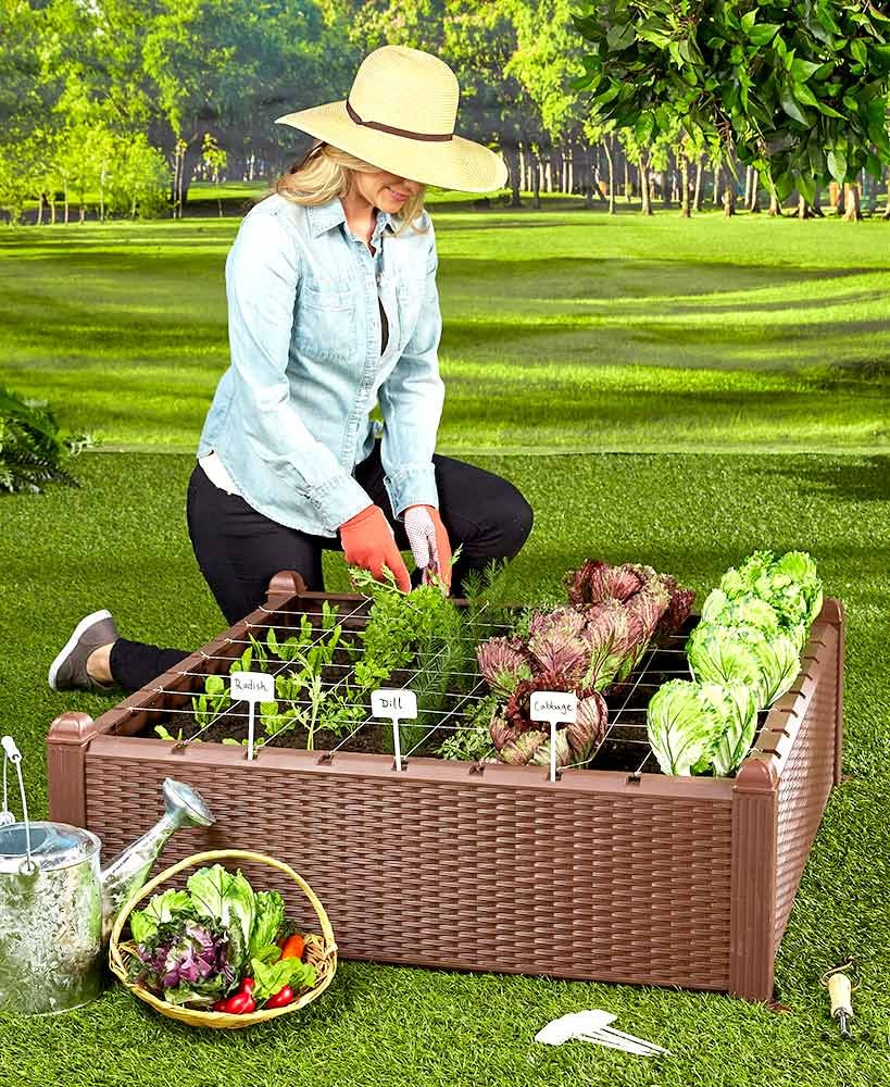 The Lakeside Collection Raised Garden Bed Kit by The Lakeside Collection