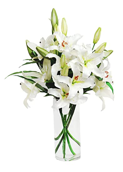 Amazon white lily bouquet 8 stems with vase grocery white lily bouquet 8 stems with vase mightylinksfo