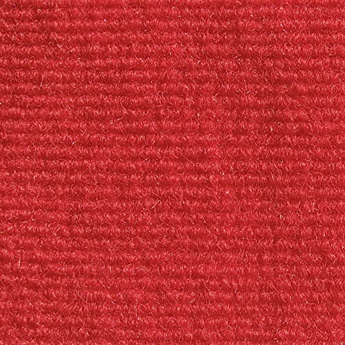 Koeckritz Red Indoor-Outdoor 3 16 Thick Unbound Area Rug with Latex Marine Backing 6 x12