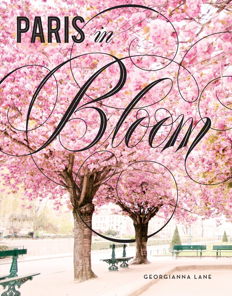 Paris Bloom Georgianna Lane product image