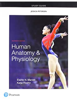 Amazon Com Study Guide For Human Anatomy And Physiology