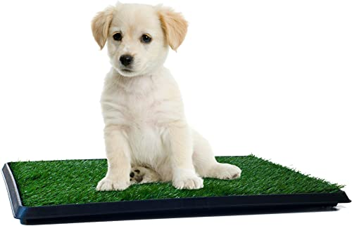 Artificial-Grass-Bathroom-Mat-for-Puppies-and-Small-Pets--Portable-Potty-Trainer-for-Indoor-and-Outdoor-Use
