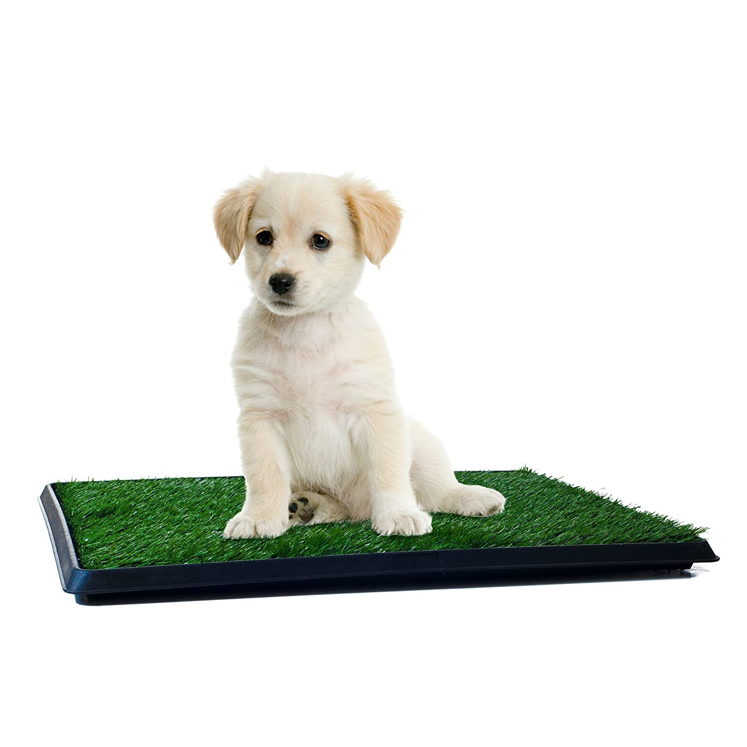 Artificial Grass Bathroom Mat for Puppies and Small Pets- Portable Potty Trainer for Indoor and Outdoor Use
