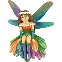 Daisy Maravillosa Hada en Miniatura para Jardín