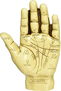 Amazon com: CircuitOffice Palmistry Hand with a Guide Book