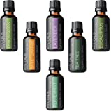 Aromatherapy Top 6 100% Pure Therapeutic Grade Basic Sampler Essential Oil Gift Basic sampler essential oil gift set 6-30ML (tea tree, sweet orange, lemongrass, eucalyptus, lavender, peppermint)