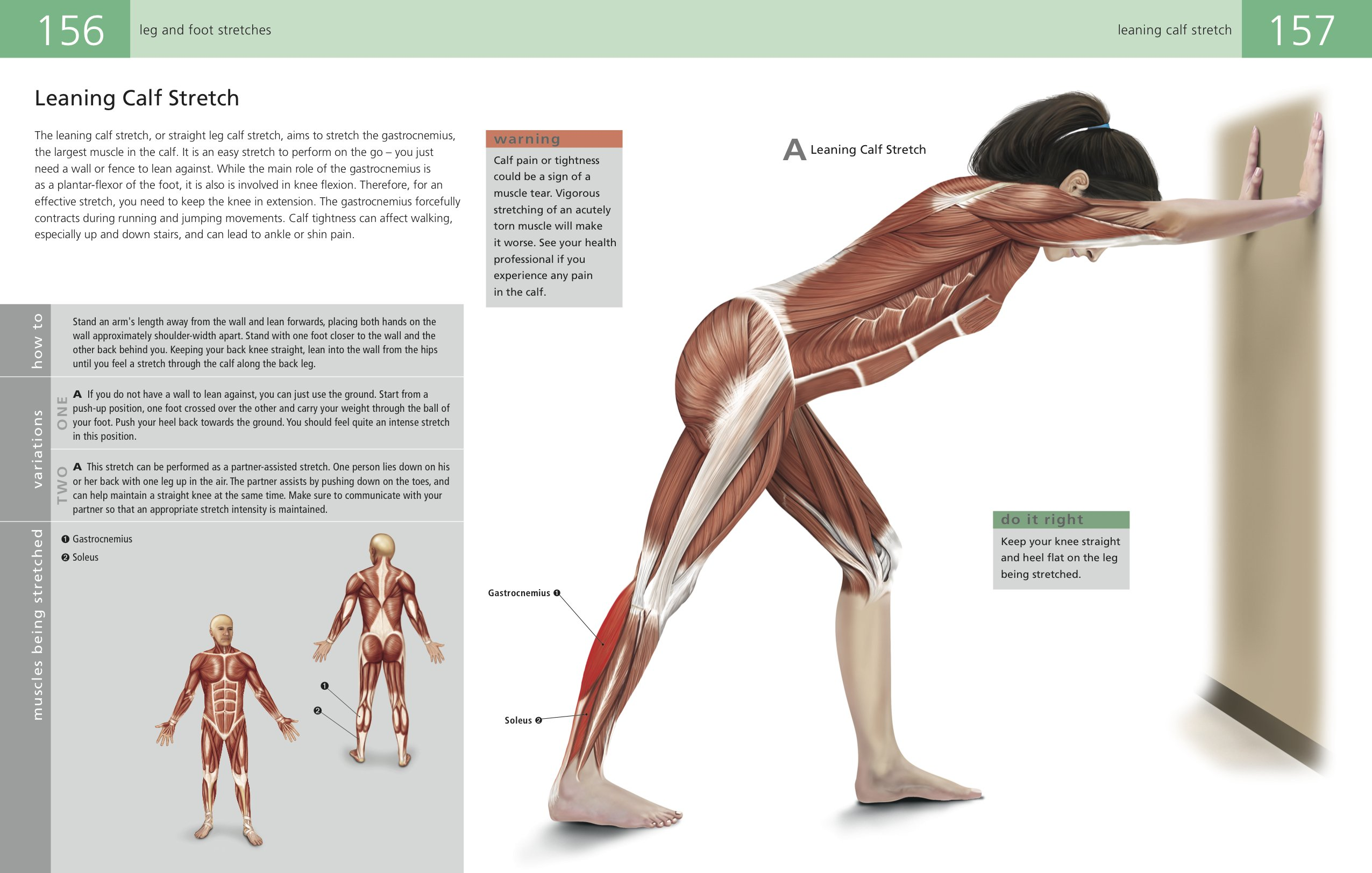 The Students Anatomy Of Stretching Manual Amazon Kenneth
