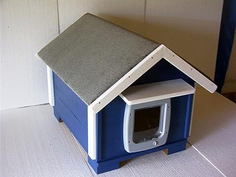 Gato Casa Exterior con gato Tapa aislado