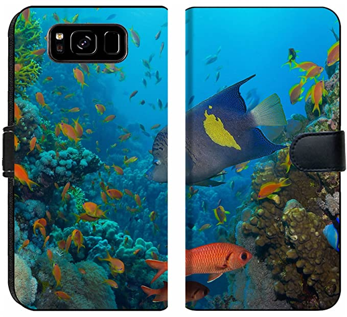 Samsung Galaxy S8 Fish Wallpaper Hd Wallpaper Directory