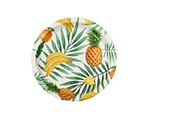 Acemi Round Disposable Plates - Natural Paper Eco-friendly Environmental Paper Plates(100 counts  sc 1 st  Amazon.com & Amazon.com: Acemi Round Disposable Plates - Natural Paper Eco ...