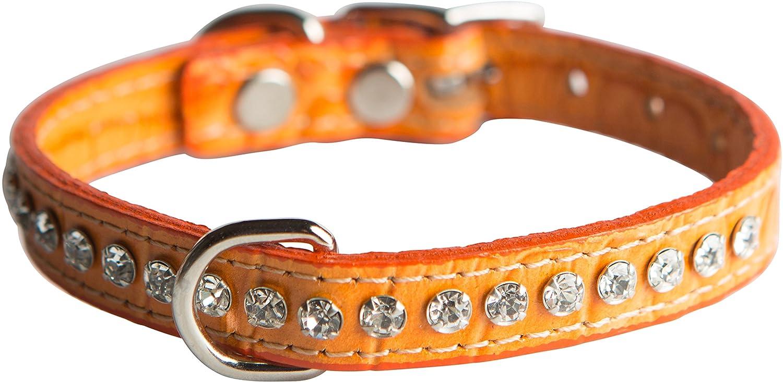 Faux Crocodile Print orange 10\ Faux Crocodile Print orange 10\ OmniPet Signature Leather Crystal and Dog Collar, Faux Crocodile Print, 10 , orange