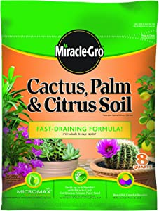 Miracle-Gro 0062581-298 Cactus, Palm, & Citrus Soil - 8 Quart(Older Model)