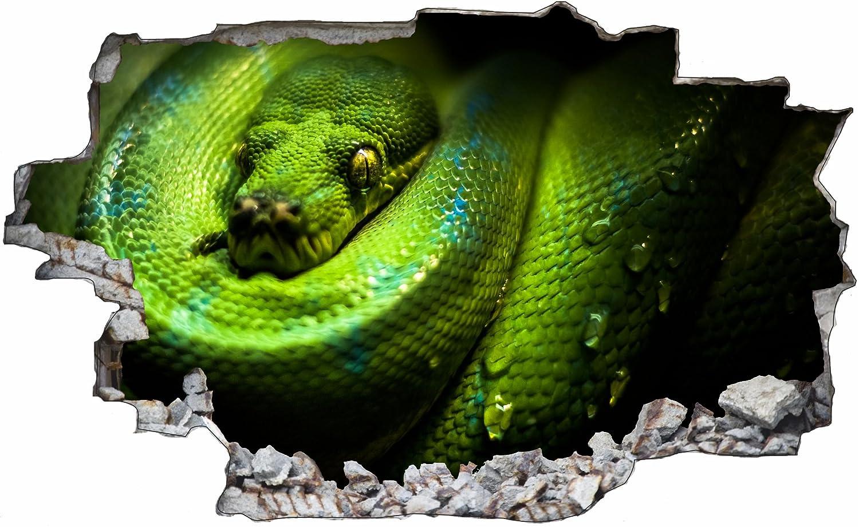 DesFoli Schlange Python 3D Look Wandtattoo 70 x 115 cm ...