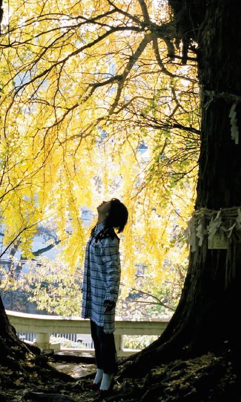 能年玲奈 銀杏の木の下で上を見上げるのんさん FVGA(480×800)壁紙画像