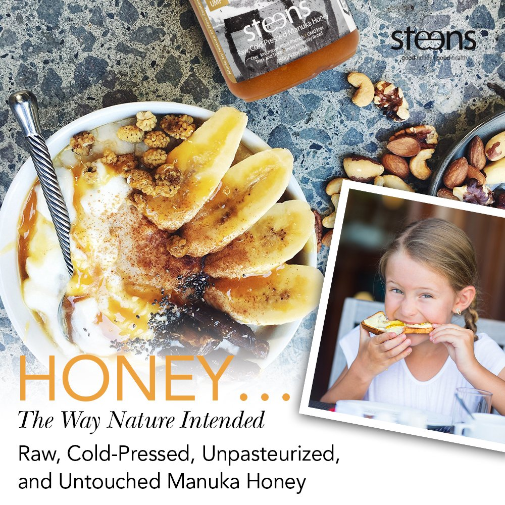 Steens Manuka Honey UMF 24 (MGO 1122) 17.6 Ounce jar | Pure Raw Unpasteurized Honey From New Zealand NZ | Traceability Code on Each Label by Steens (Image #2)