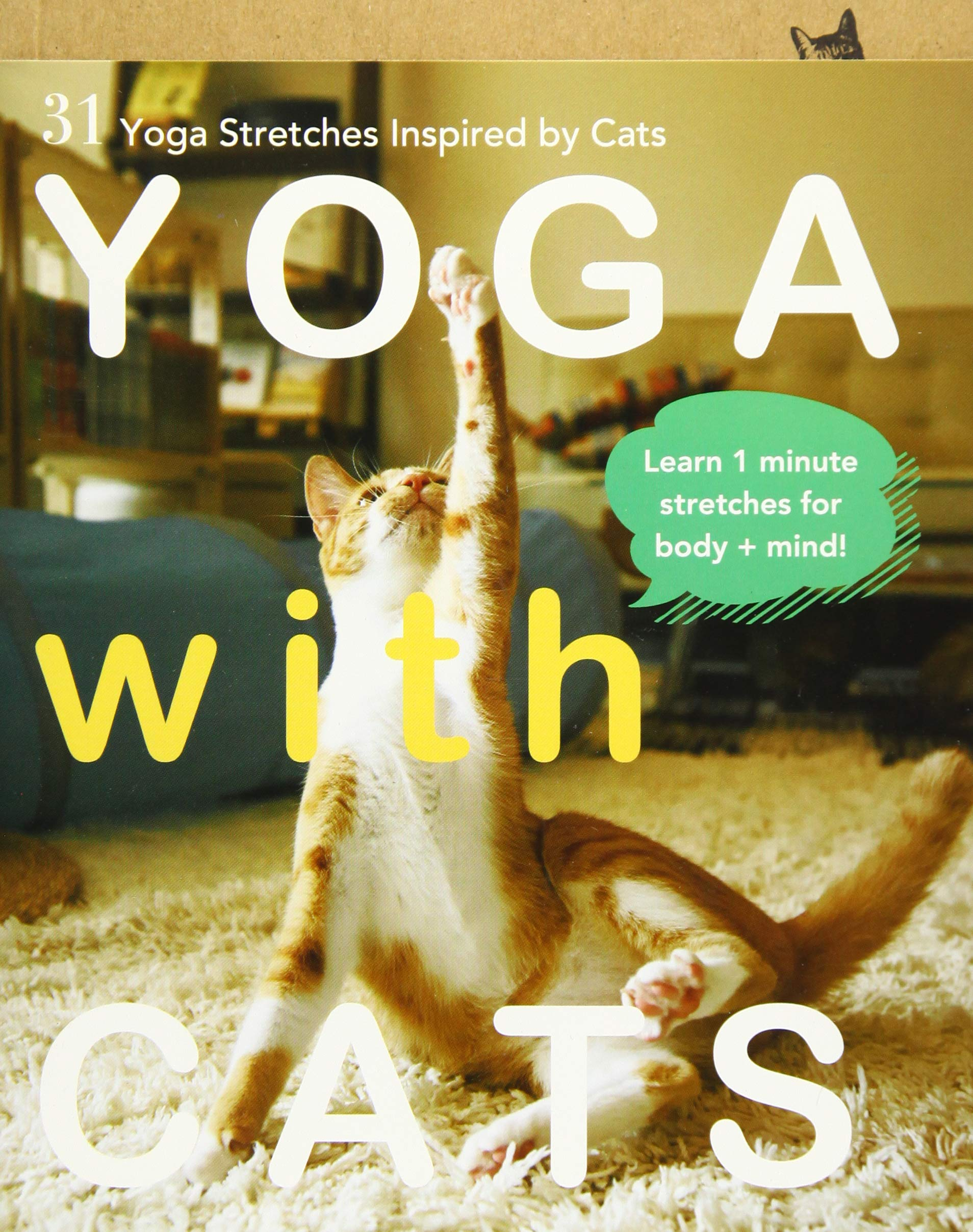 Yoga with Cats: 31 Yoga Stretches Inspired by Cats: Amazon ...