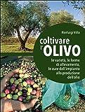 Coltivare l'olivo. Dall'impianto alla produzione dell'olio