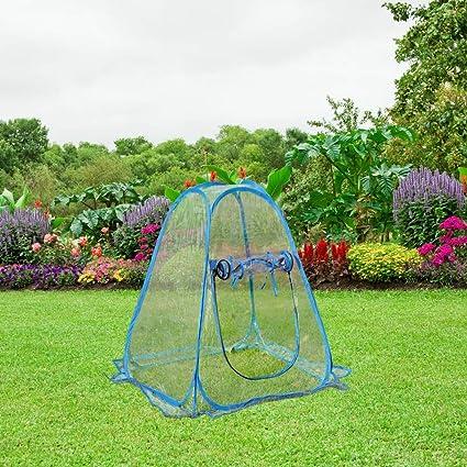 Amazon.com: PHI VILLA invernadero para exteriores con diseño ...