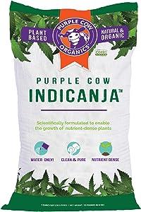 Purple Cow IndiCanja 1 Cubic Foot Bag Organic Living Soil