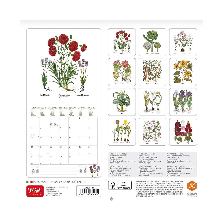 color Cats QUADRATO Calendario de pared Calendario 2020 Legami Medidas 18 x 18 cm