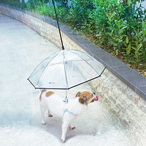 LESYPET Pet Umbrella, Dog Umbrella with Leash Folding Assembled Puppy Doggy  Umbrella (Transparent)