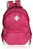 Bag-Age 35 Ltr Red-Grey Casual Backpack