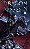 Dragon Assassin 1: Twin Fury (English Edition)