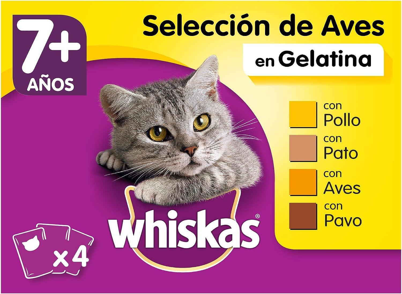 Whiskas Multipack de Comida Húmeda en Gelatina para gatos senior Selección Aves (Pack de 13 x 4 bolsitas x 100g)