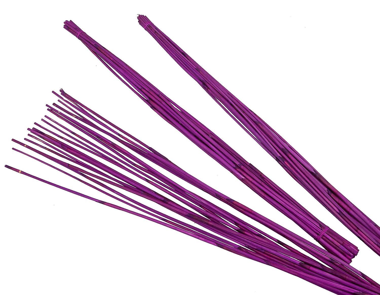 Steingaesser Barre 01139 03 6700 Reed, circa 90 cm, vita a 60 pezzi, colore: azalea circa 90cm vita a 60pezzi 01139 03 6700