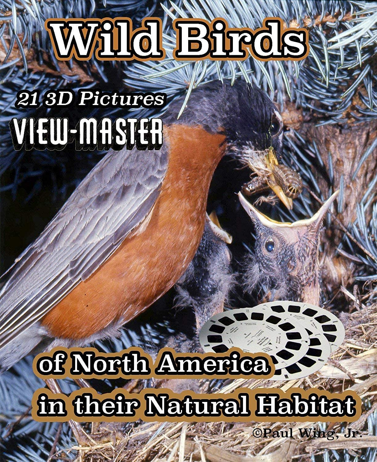 Wild Birds of North America - Classic Viewmaster 3 Reels 21 3D Images