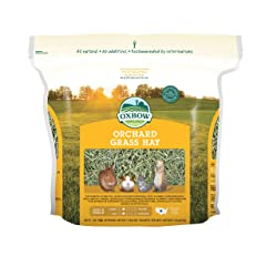 Oxbow Animal Health Orchard Grass Hay