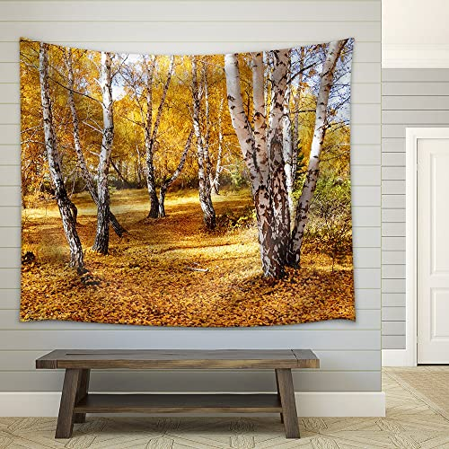 wall26 – Nature Altaya Pleases Eye of The Artist in Any Season of The Year – Fabric Wall Tapestry Home Decor – 68×80 inches
