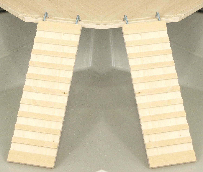 petgard jaula adolescente accesorios pisos Juego de madera | 2 x Wega 17 cm RAMPAS | Escalera jaula accesorio Escalera adolescente Bundle para hámster, cobayas, etc.: Amazon.es: Productos para mascotas