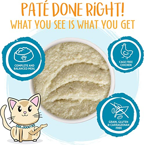 Weruva Classic Cat Pat s Grain-Free Natural Wet Pate Cat Food Cans