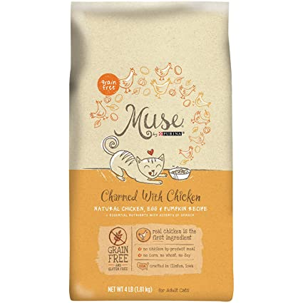 Amazon muse by purina sailing with salmon natural salmon egg muse by purina sailing with salmon natural salmon egg yogurt recipe cat food forumfinder Image collections