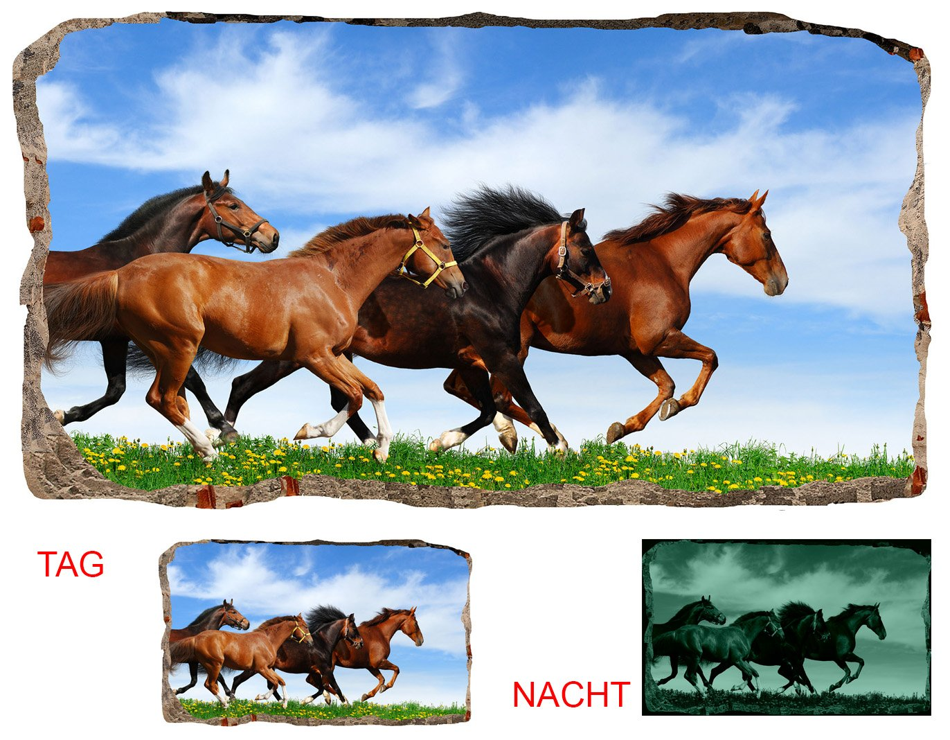 Startonight 3D Mural Wall Art Photo Decor Horses Running Amazing Dual View Surprise Large Wall Mural Wallpaper for Living Room or Bedroom Horses Wall Art 120 x 220 cm
