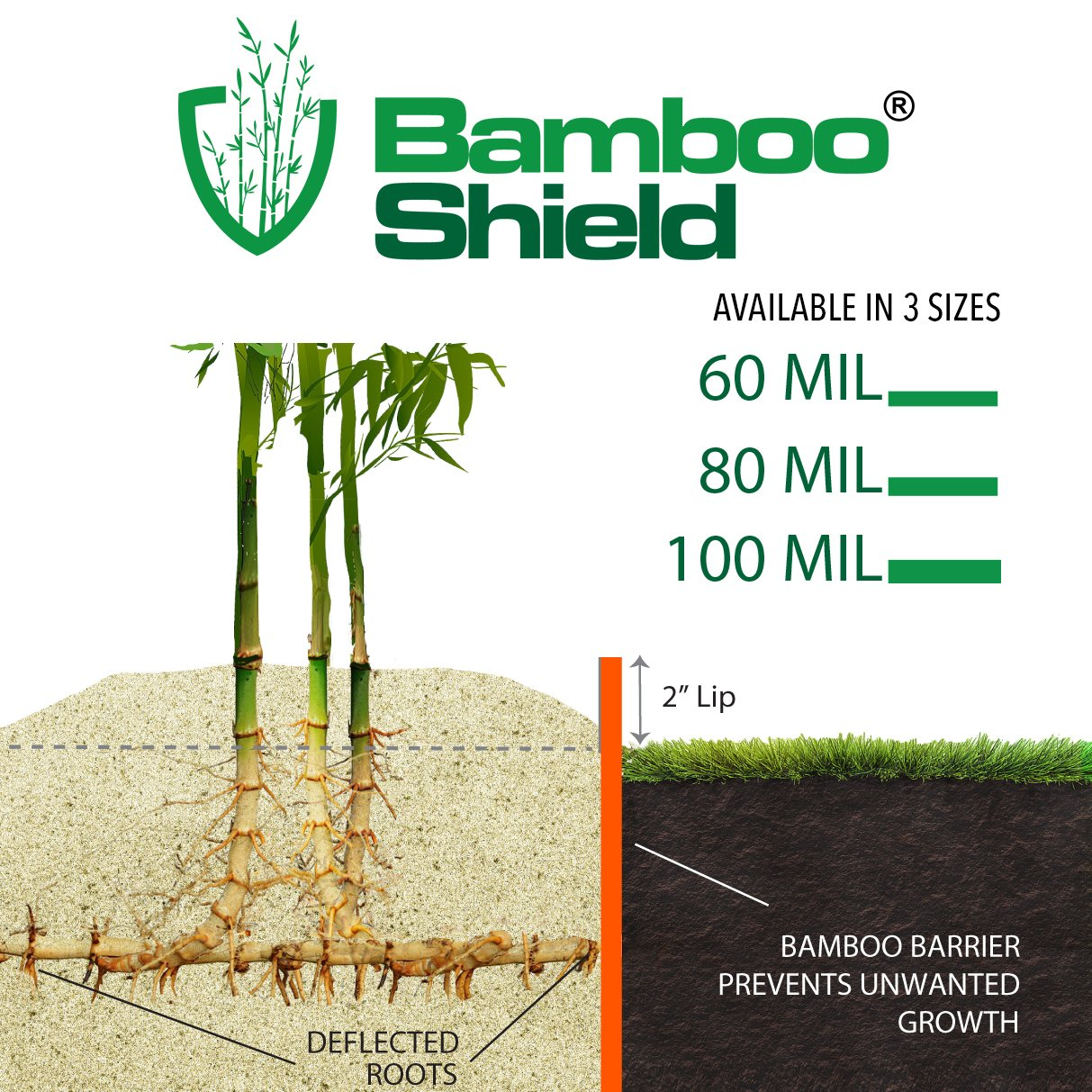 Bamboo Shield - 50 Foot Long X 30 Inch x 80mil Bamboo Root Barrier/Water Barrier by Bamboo Shield (Image #2)
