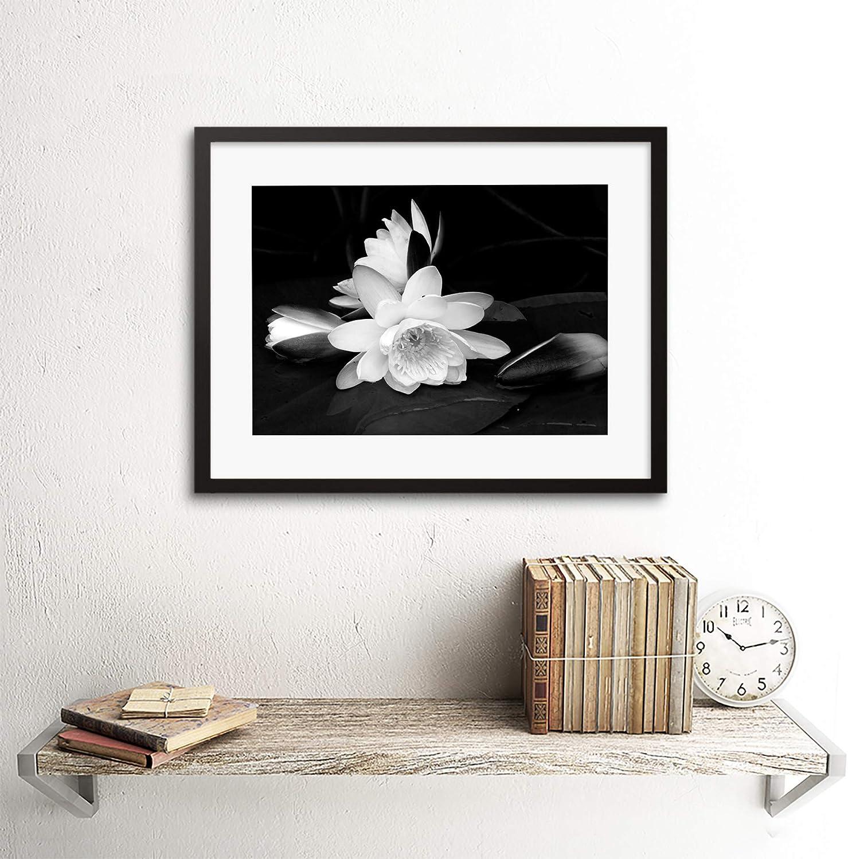 Amazon.com: Flor blanca Bloom fondo negro Framed Art Print ...