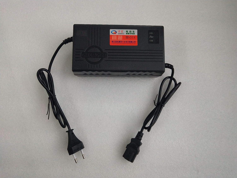 SUCAN Chargeur De Batterie De 60V 20AH pour Le Chargeur Rapide De Batterie Au Plomb De V/élo /électrique De V/élo De Roue De Scooter Selon La Norme Europ/éenne