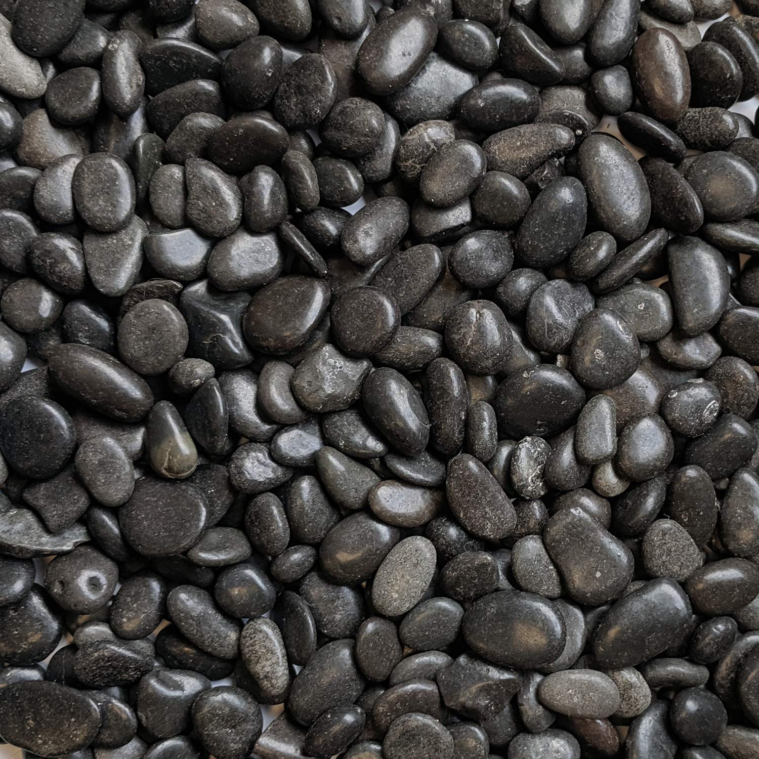 "Midwest Hearth Natural Decorative Polished Black Pebbles 3/8"" Gravel Size (2-lb Bag)"