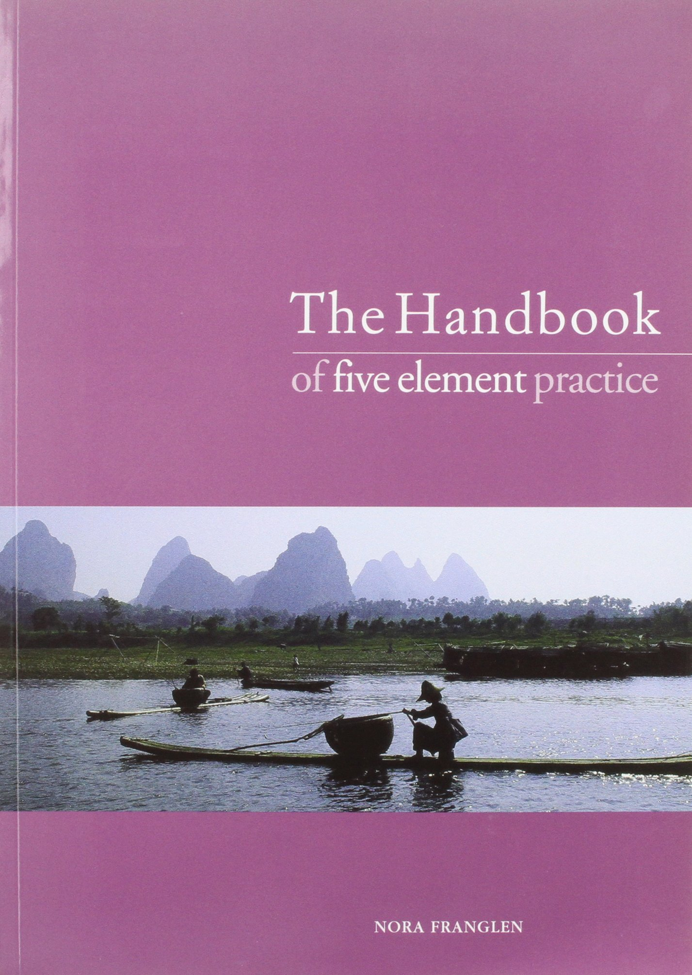 The Handbook of Five Element Practice: A Guide to the Practice of Five Element Acupuncture pdf epub