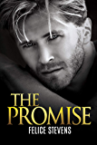 The Promise (Lost in New York Book 2)