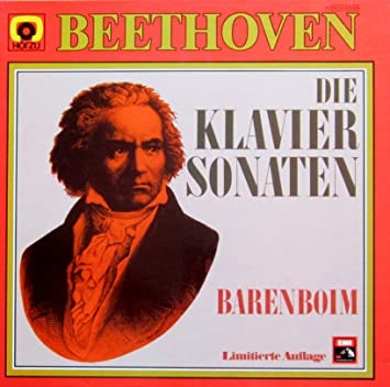 Beethoven: Die Klaviersonaten [Vinyl Schallplatte] [12 LP Box-Set ...