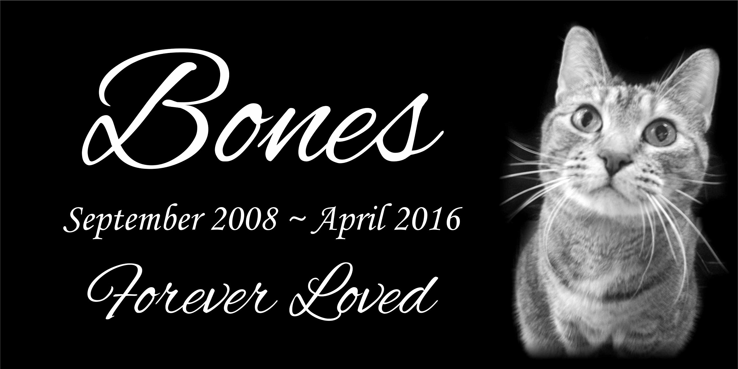 Personalised Pet Stone Memorial Marker Granite Marker Dog Cat Horse Bird Human 6'' X 12'' Kitten