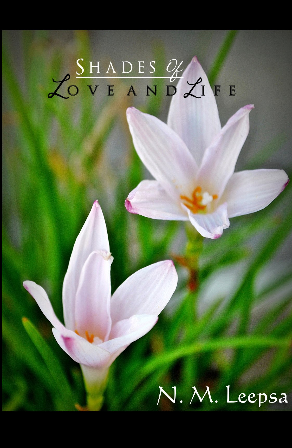 Shades of Love and life