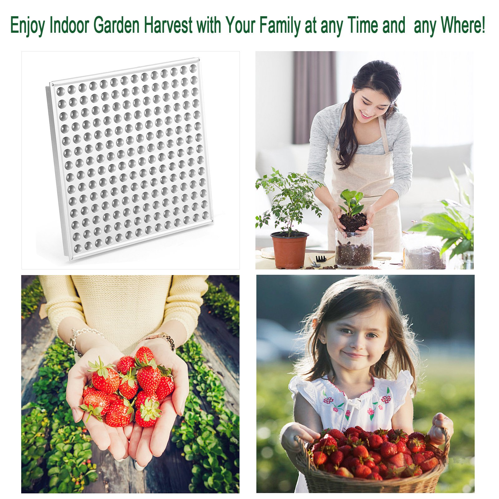 LED Grow Light for Indoor Plants,YGROW Upgraded 75W Growing Lamp Light Bulbs with Exclusive Full Spectrum for Greenhouse Hydroponic Plants from Seeding to Harvest by YGROW (Image #5)