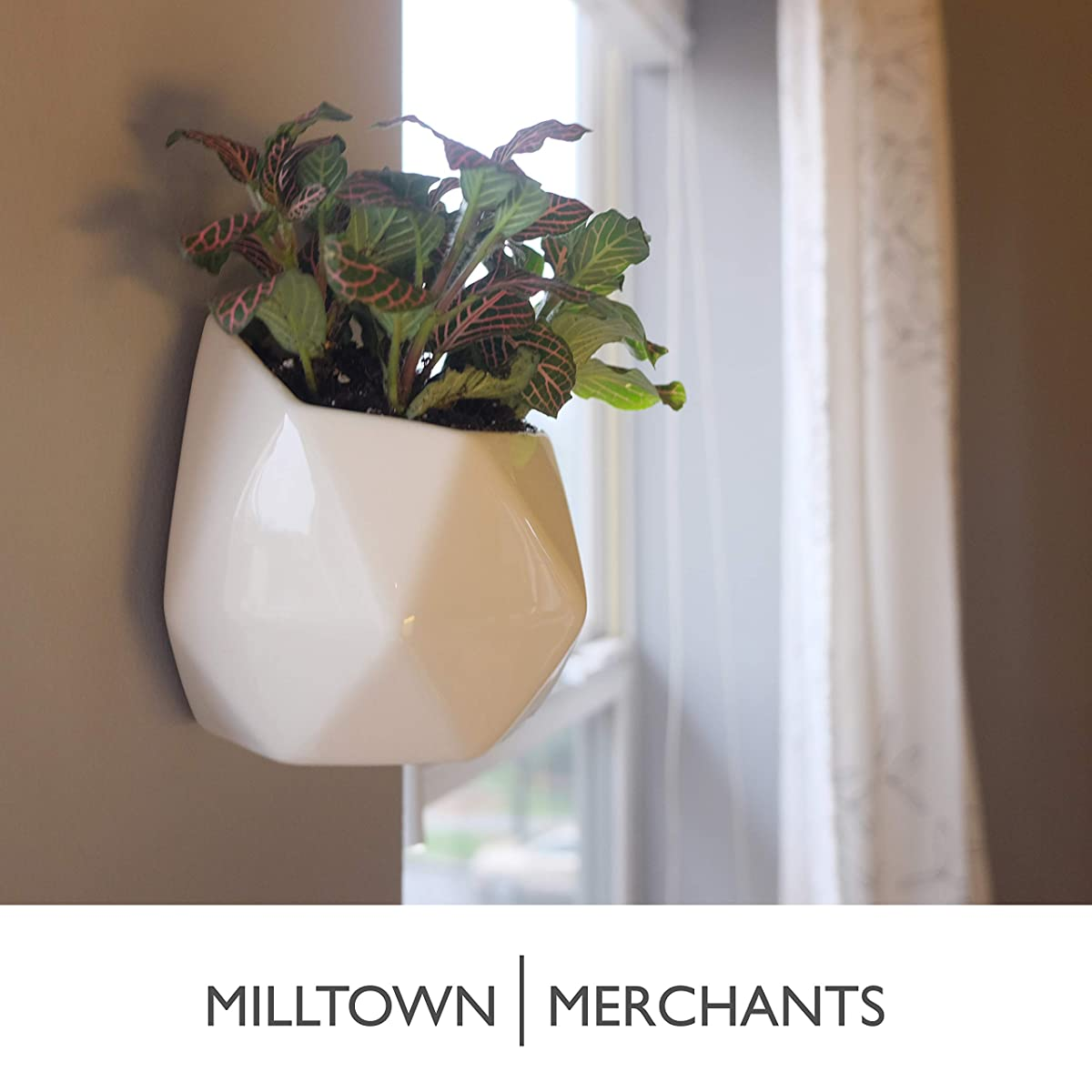 Milltown Merchants Succulent Wall Planters - Wall Vases - Black Ceramic Wall Mounted Planters - Succulent Plant Pots - Hanging Vases for Living Wall (4 Pack/Geometric/White)